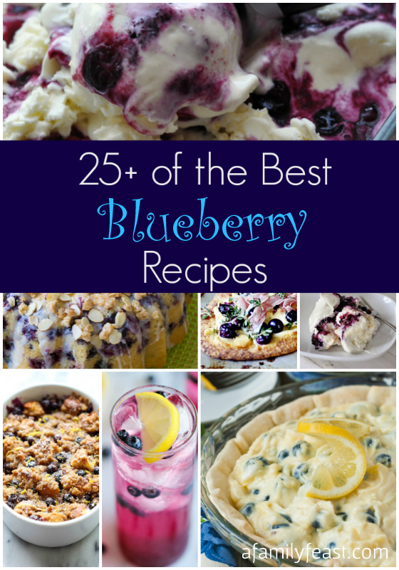 25+ Best Blueberry Recipes - A Family Feast