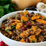 Butternut Squash with Rainbow Quinoa