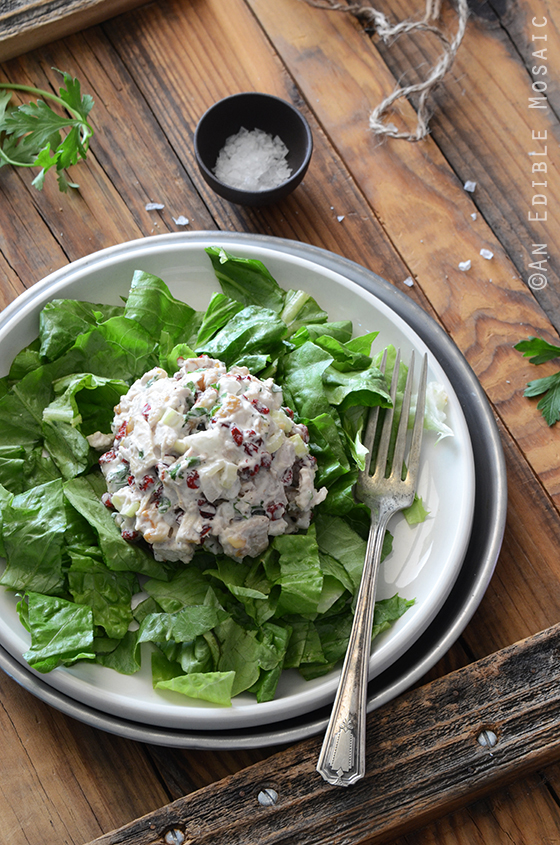 This Creamy Cranberry Walnut Chicken Salad from An Edible Mosaic is just one of over 20 delicious chicken salad recipes on A Family Feast
