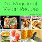 25+ Magnificent Melon Recipes